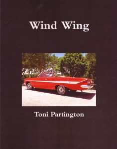 Wind Wing Cover