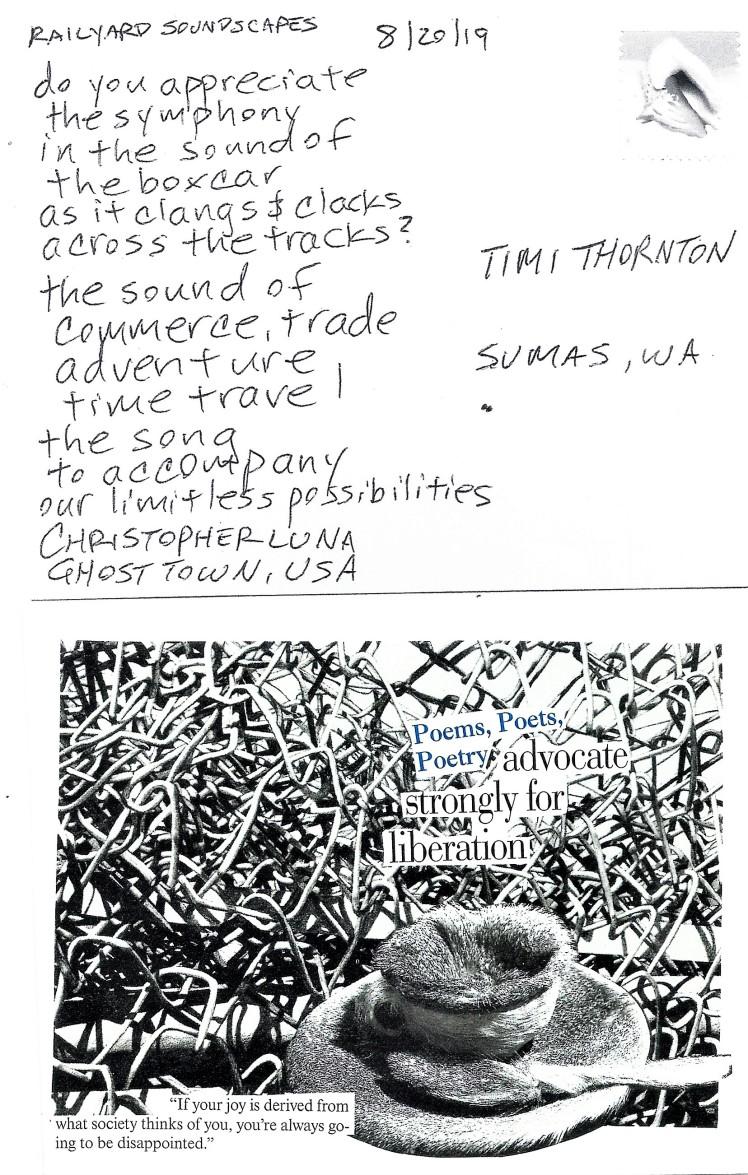 August 20 Timi Thornton